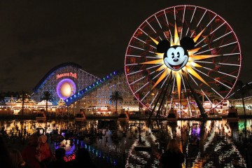 disneyland_night