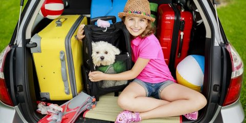 Pet friendly family accommodation, Australia